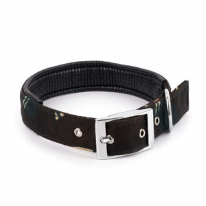 Military Collar for dogs