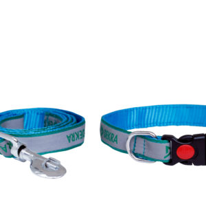 Radium Set(Collar and Leash)